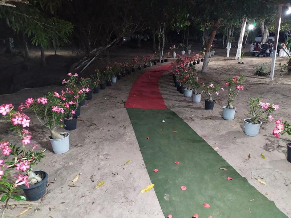 Palace Eventos