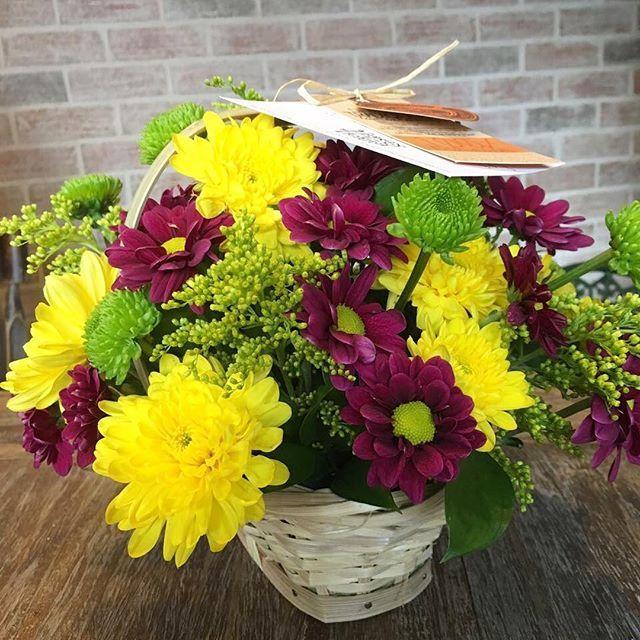 Flores de Mi Tierra