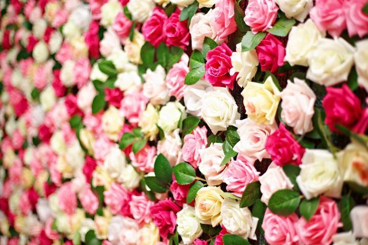 Blumenwand Vermietung in München