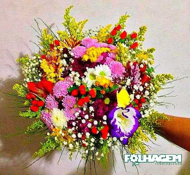 Folhagem Floricultura