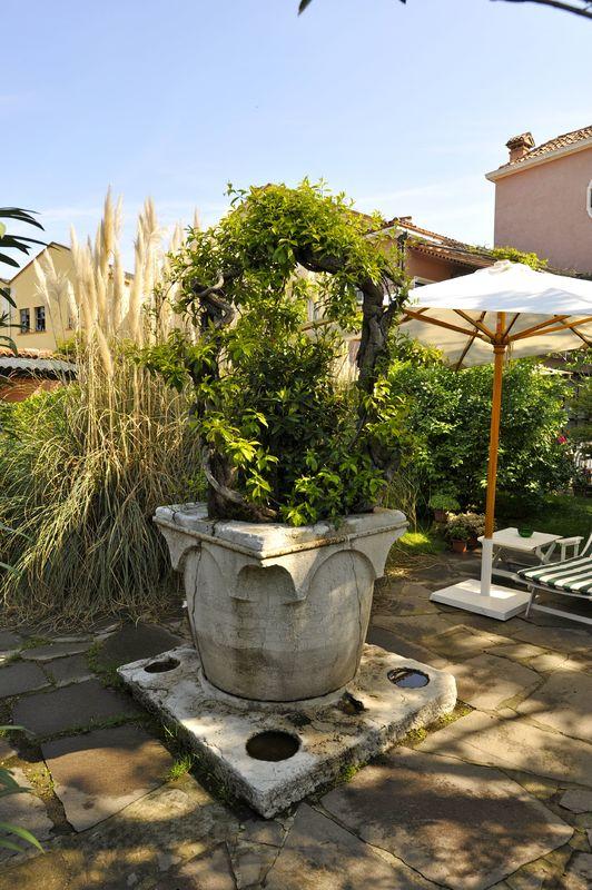 Particolare del giardino: vera da pozzo del XVI secolo