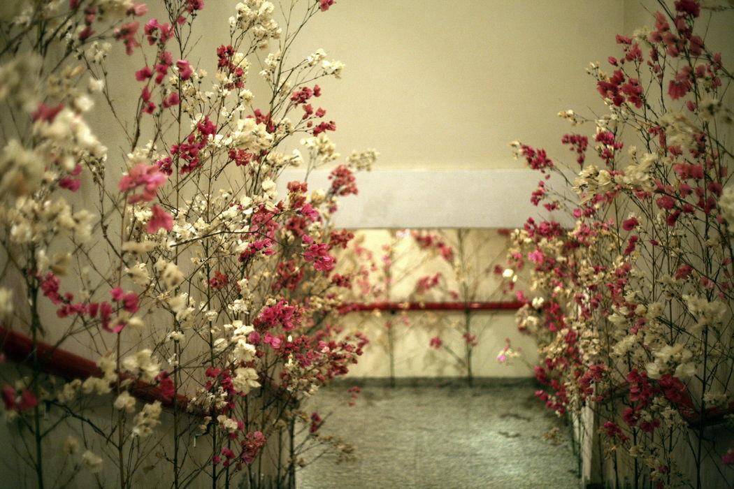 Susana Araújo - Studio Floral