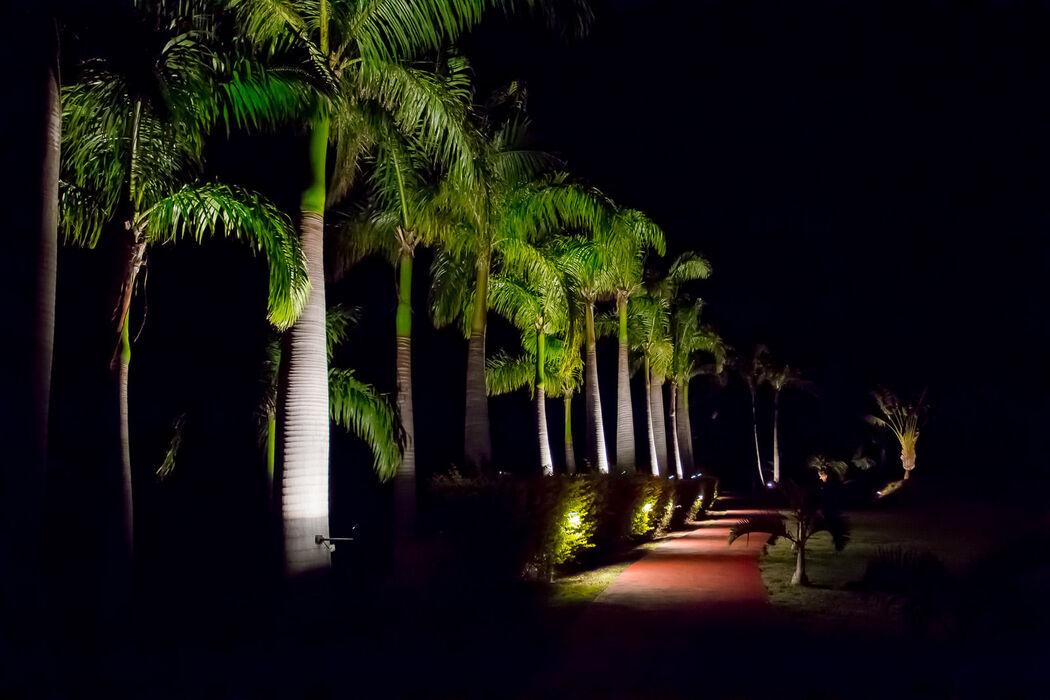Domaine des Palmiers