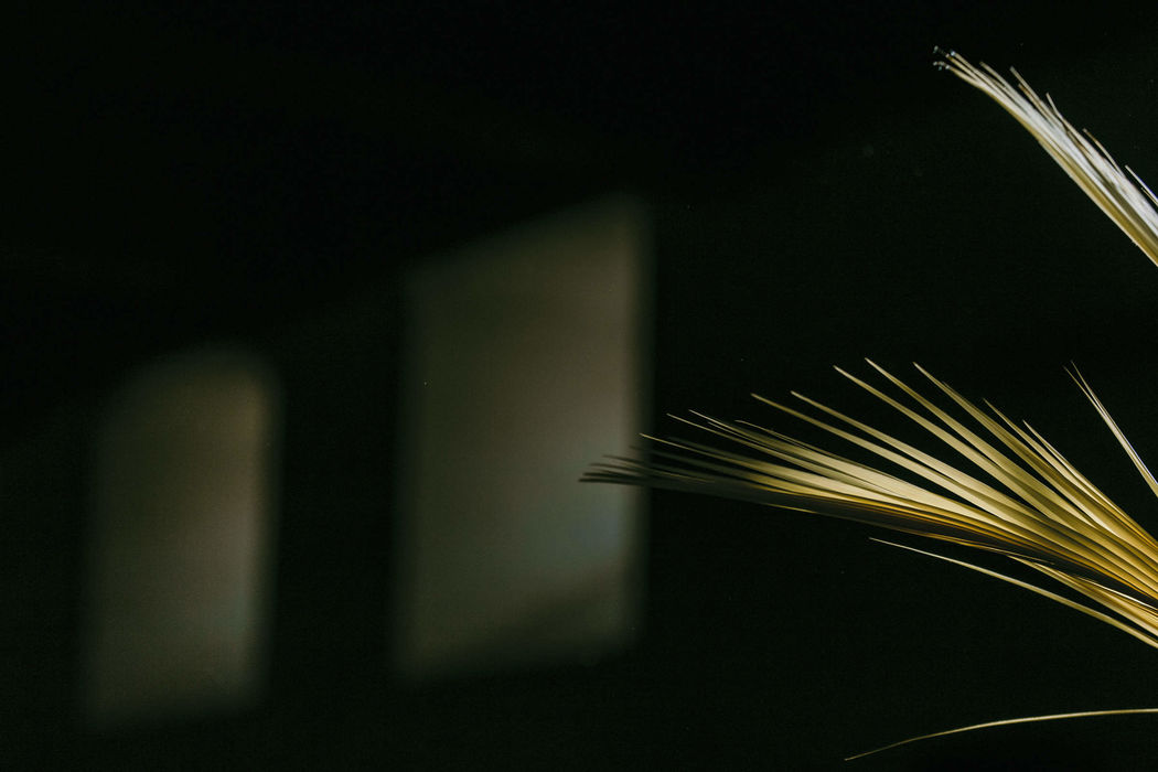 le FIL photography