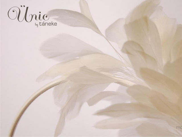 Táneke - tocado Plum
