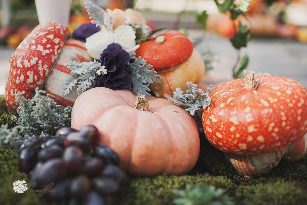 Тыквенно-виноградная свадьба