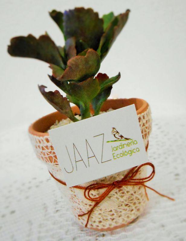 Jaaz Jardinería Ecológica