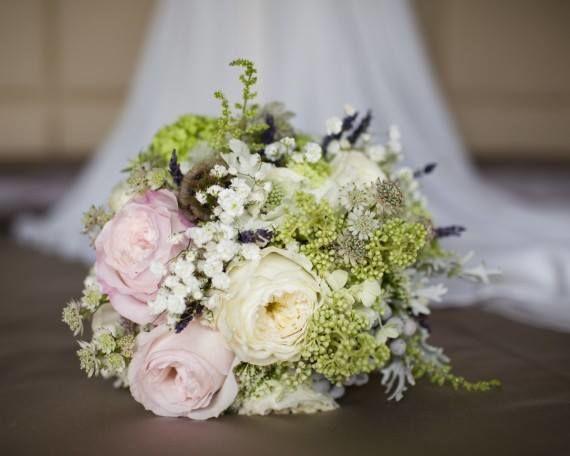 Masshiro flowering events