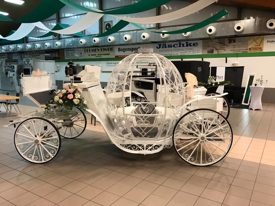 Hochzeitspferde - Wedding horses