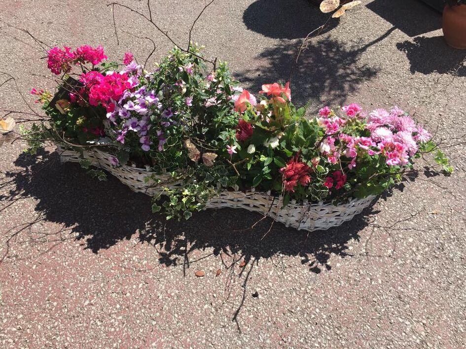 Fleurs Desprez