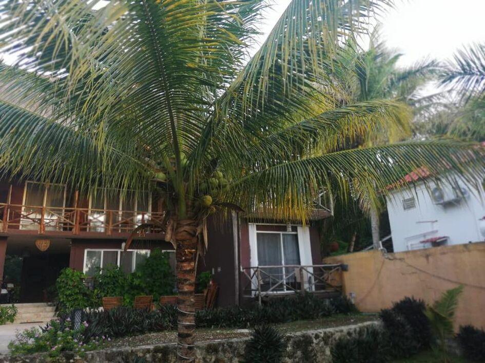 Hotel Casa corazón Bacalar