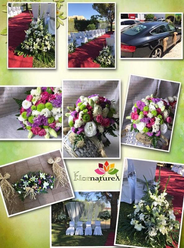 Flornaturex