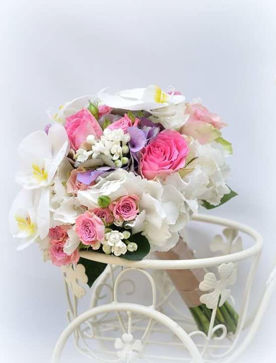 Foto: a. l. flores