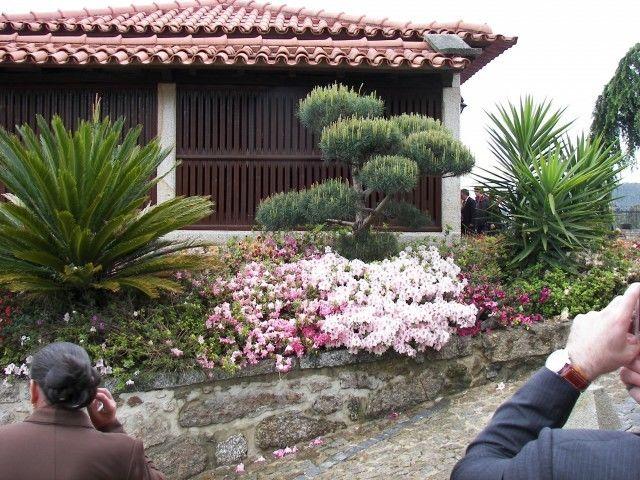 Foto: Quinta do Ribeiro