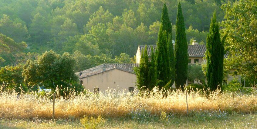Domaine de Gros Driou