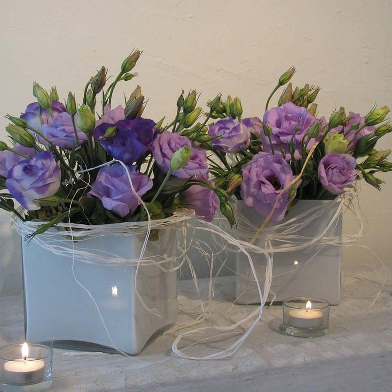 Yaksic floreria