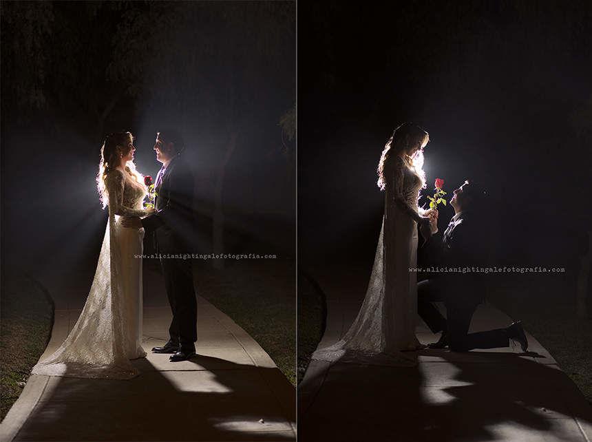 Alicia Nightingale Fotografia
