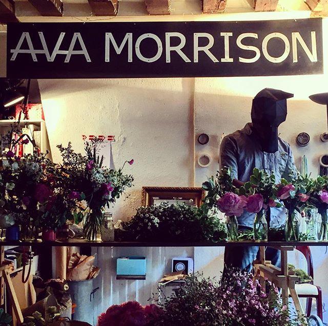 AvaMorrison