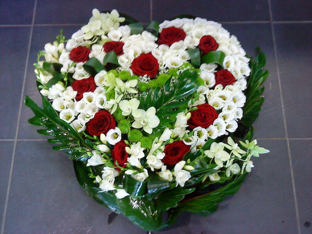 Monceau Fleurs Montpellier