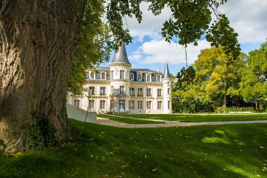 Château d'Hardricourt - le tilleul centenaire