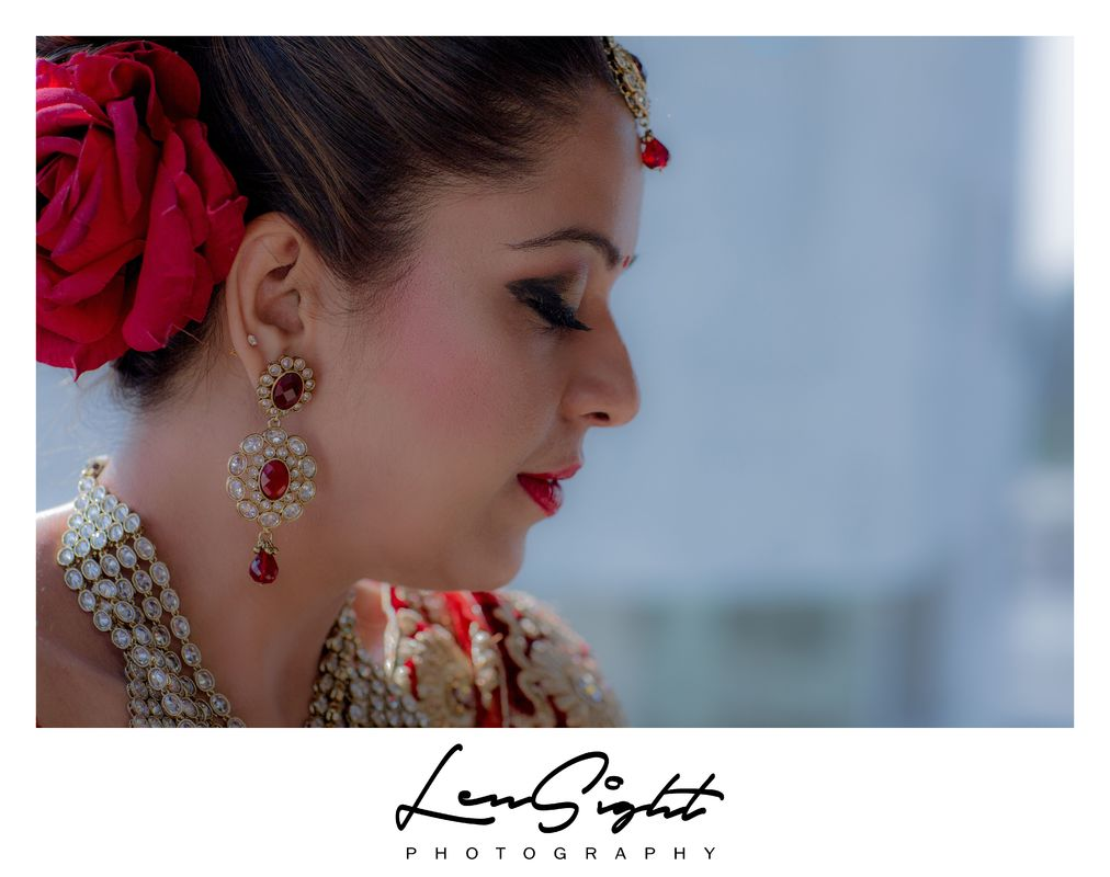 Lensight Photography