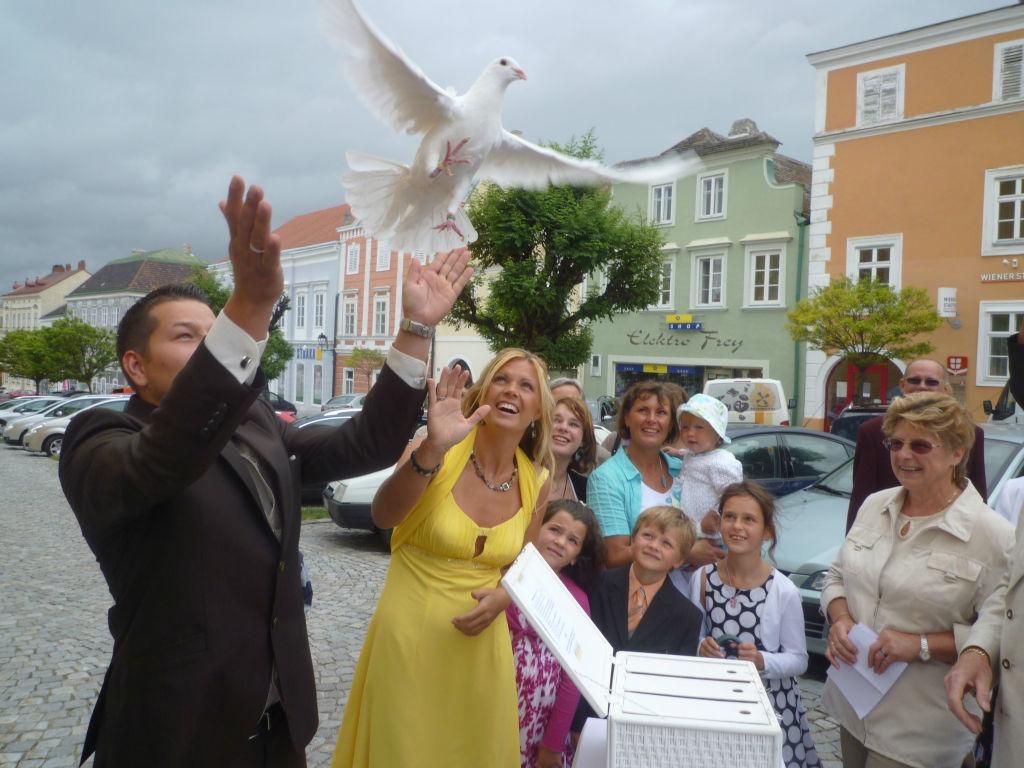 Beispiel: Das Highlight Ihrer Hochzeitsfeier, Foto: Weisse Tauben.