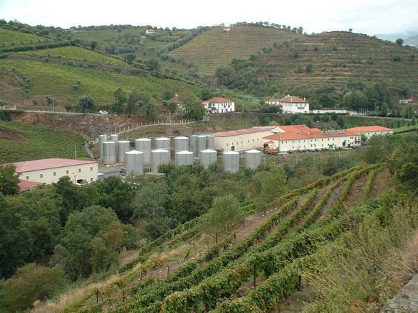 Quinta de S. Domingos,  Castelinhos
