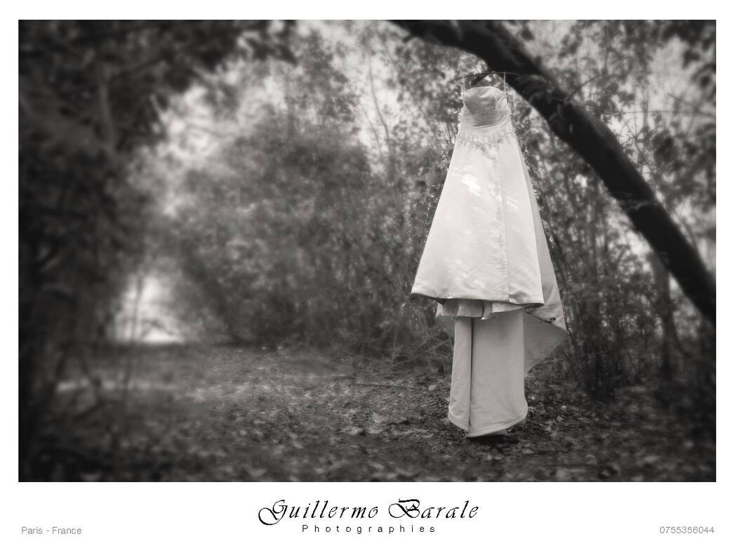 Guillermo Barale Photographies