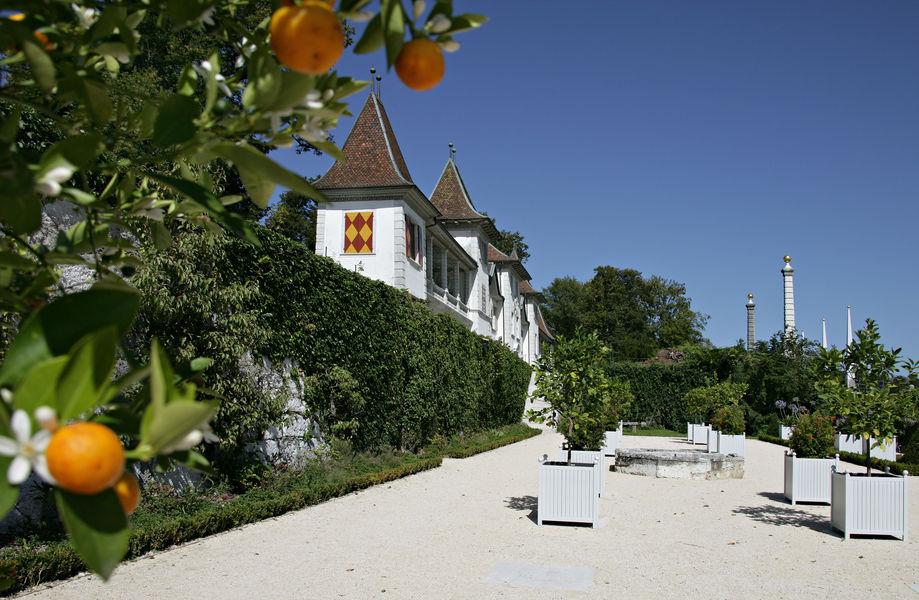 Beispiel: Orangerie Foto: Schloss Waldegg.