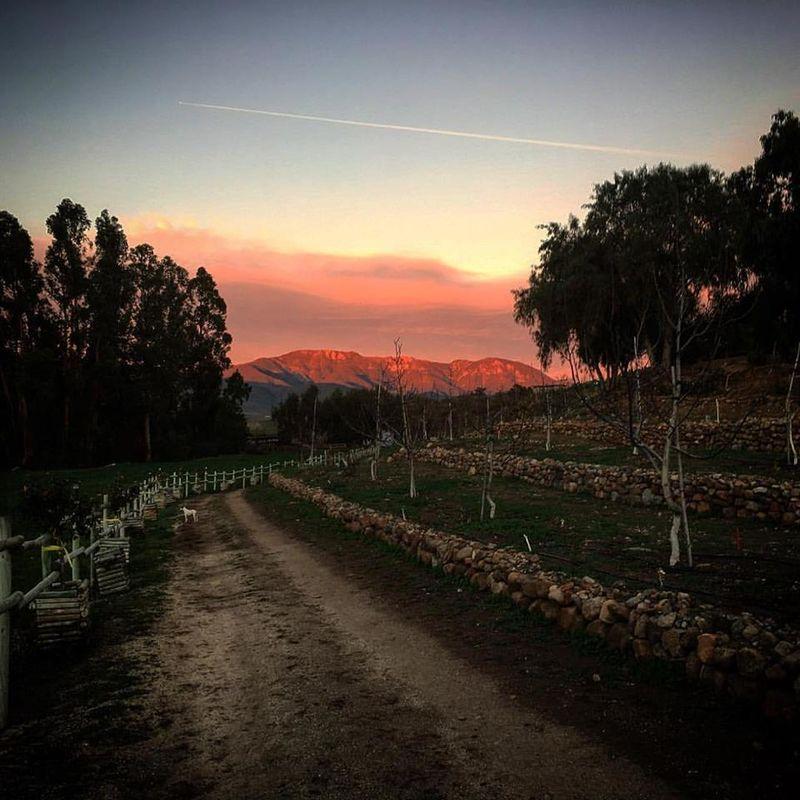 Hacienda Santa Catalina