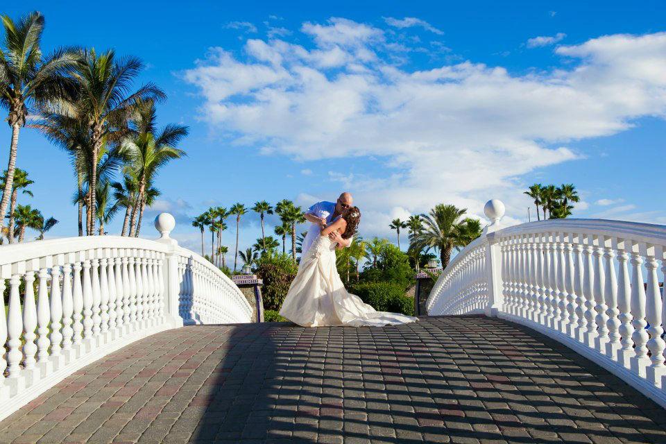 The Perfect Wedding Company