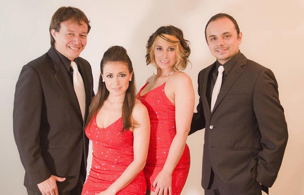 Terranova Musical