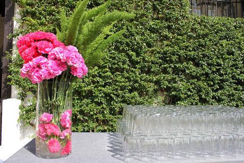 Cártamo Flores