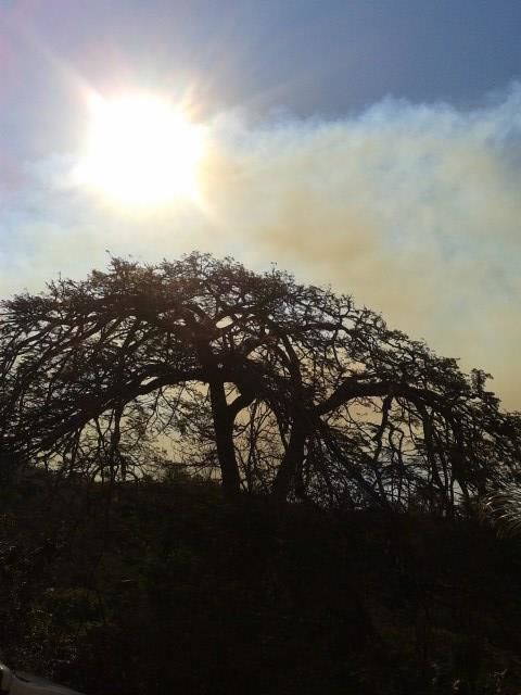 Solar Fazenda do Cedro