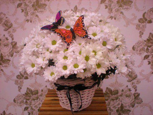 Flores y más