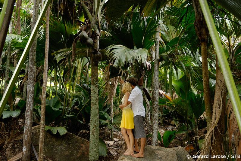 En amoureux, à la découverte de la Vallée de Mail, à Praslin, aux Seychelles