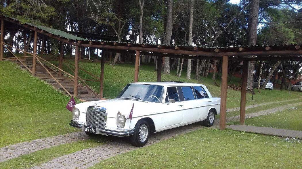 Especial Bortolan - Carro dos Noivos