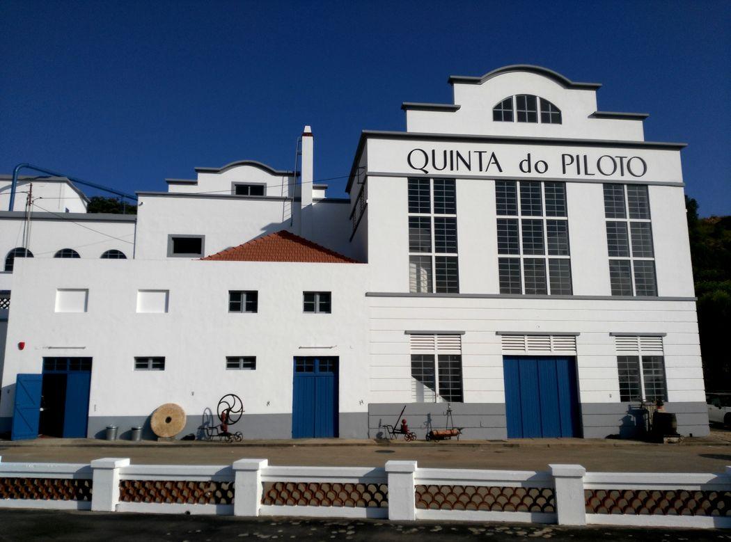 Quinta do Piloto - Vinhos