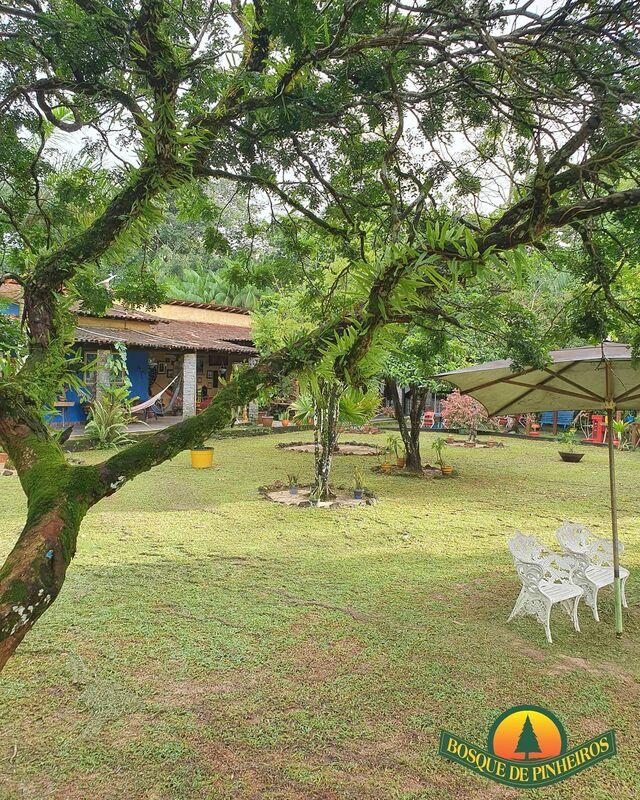 Bosque de Pinheiros