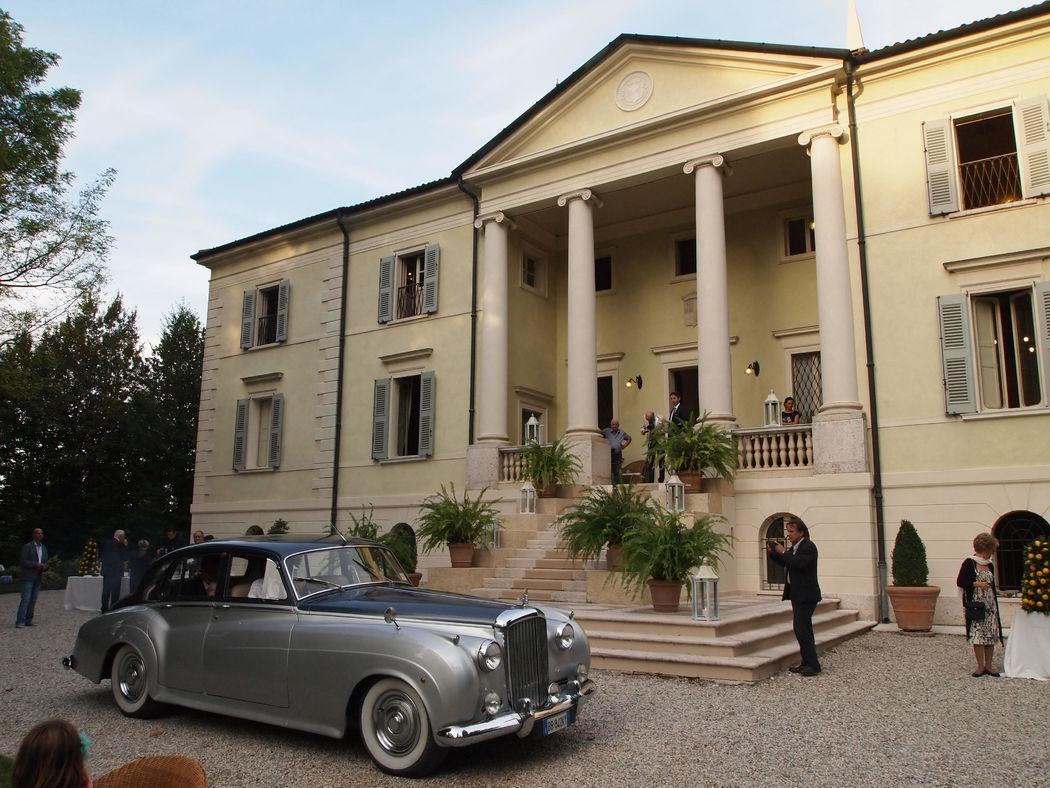 The Italian Wedding Tailor