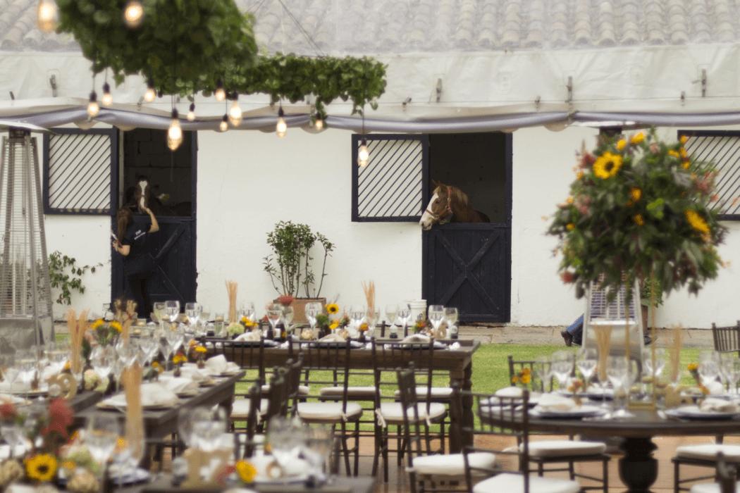 Bodega y Cocina - Catering