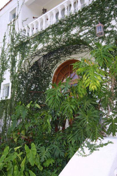 Casa Gordon  - Cozumel