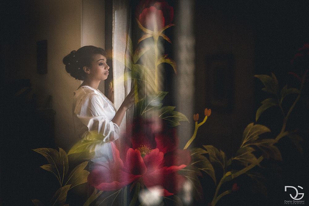 Dario Graziani Photographer