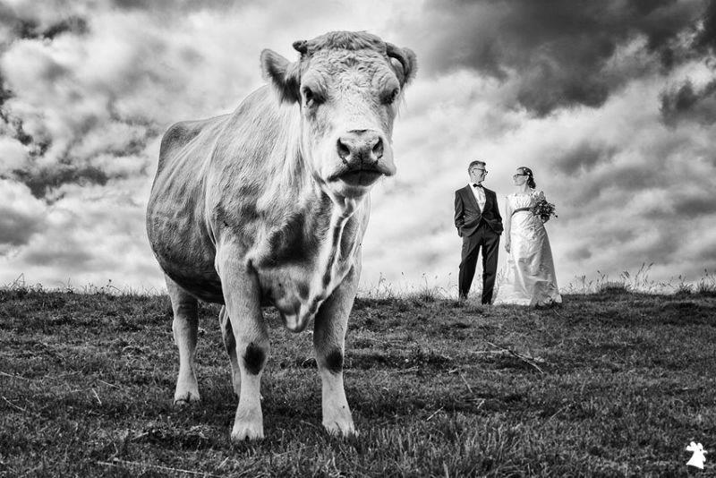 Alexander Hahn Emotional Photography