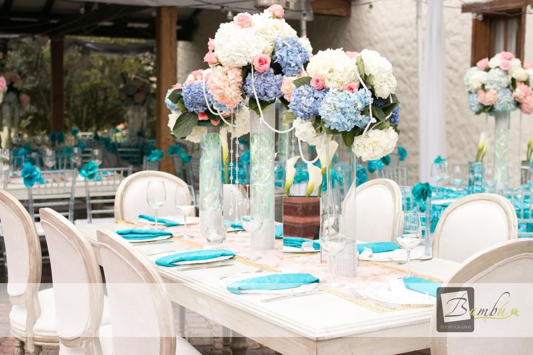 Adriana Ospina Event Social Planner
