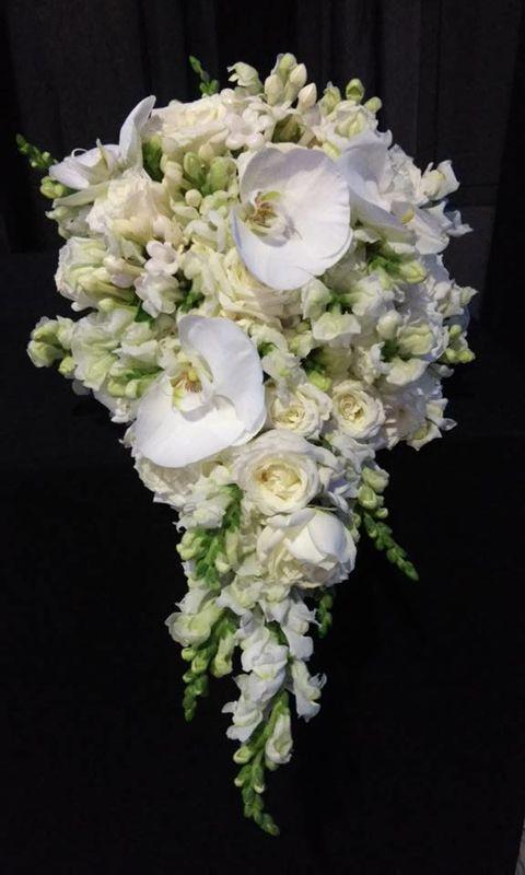 Floricultura Cipós Flores e Decoração