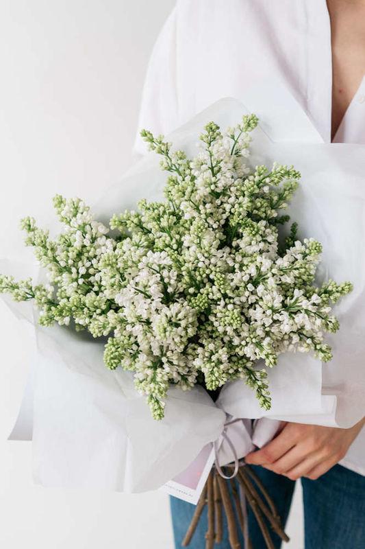 """Цветы и растения """"ПУРПУР"""""""