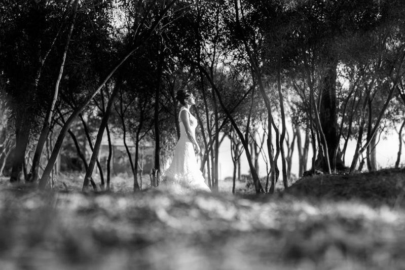 Nely Ariza Fotografía