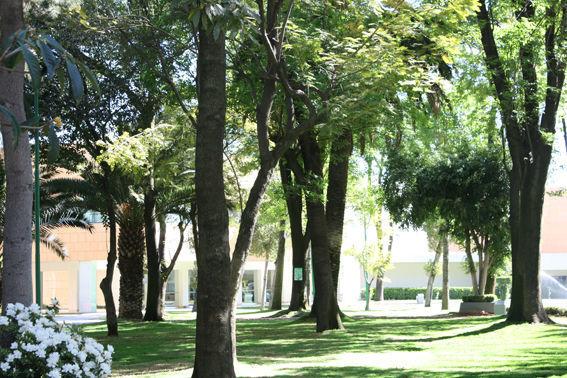 Parque Asturias en el DF