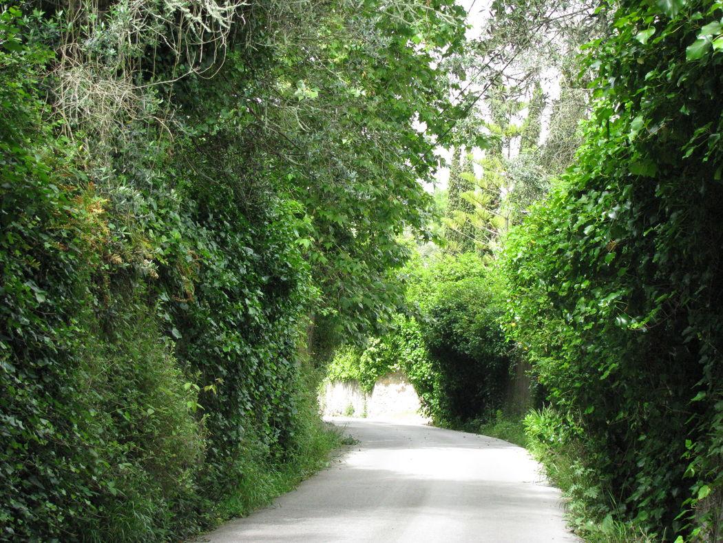 Entrada na Quinta